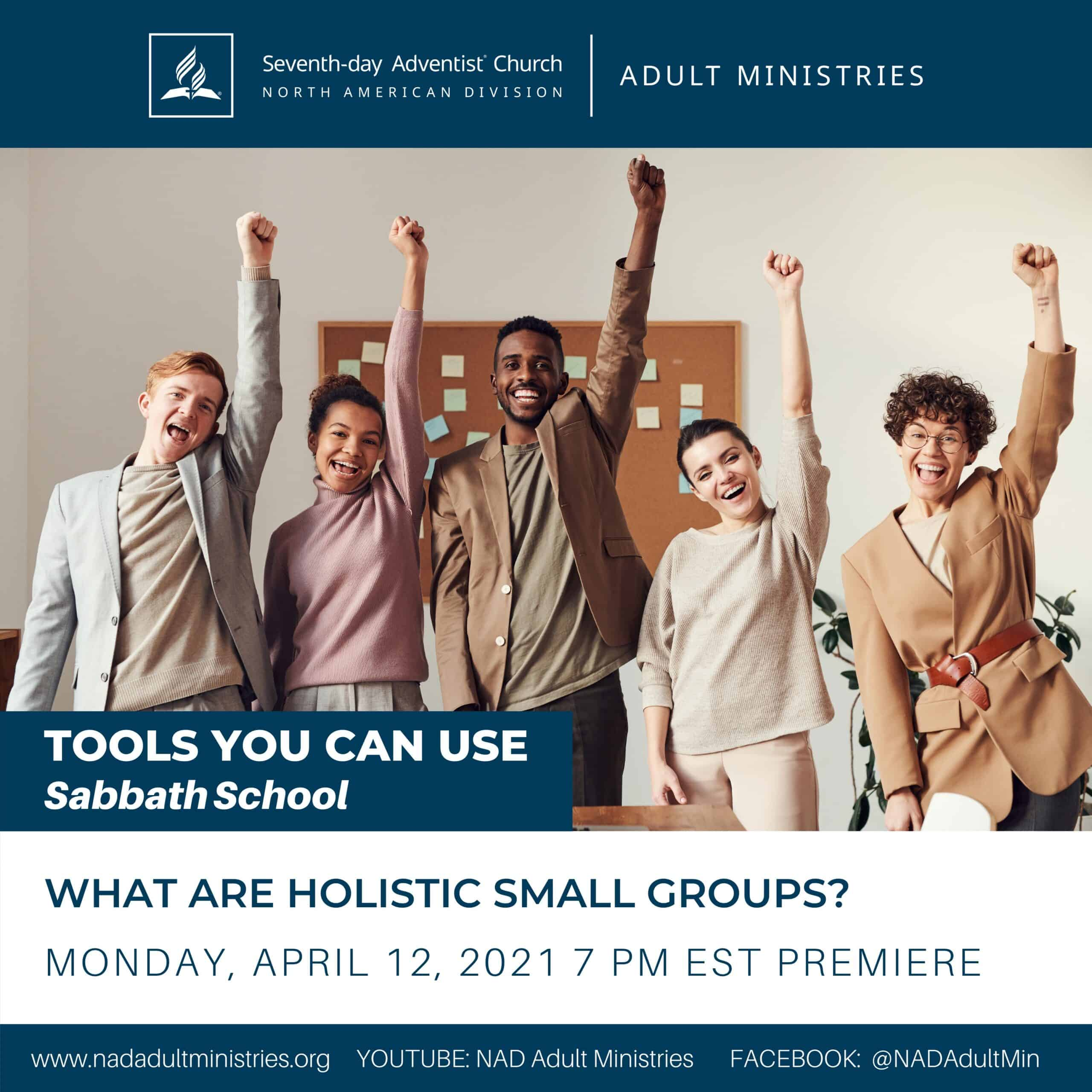 What are holistic small groups flyer